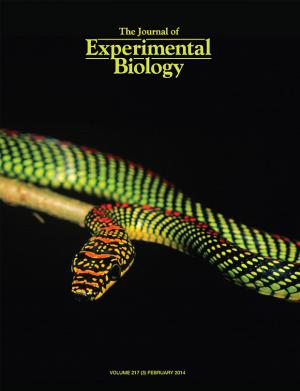 cob-journal-experimental-biology-620